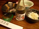 Akita_1
